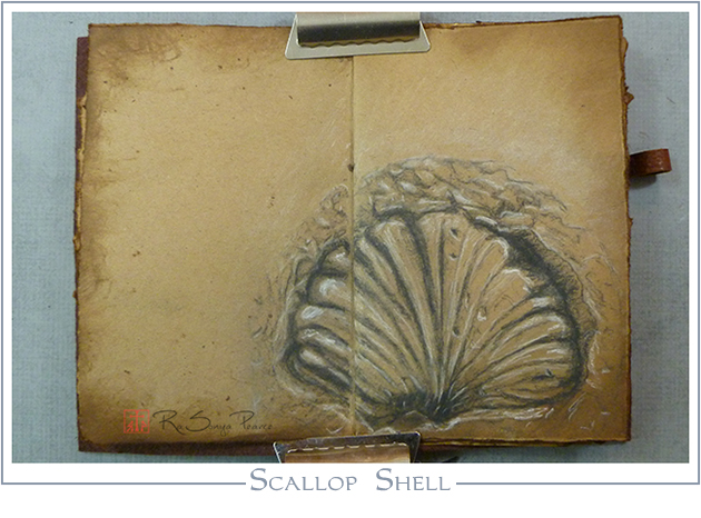 Scallop Shell, Art 365-16-48, RaSonya Pearce, www.FaithworksArtStudio.com