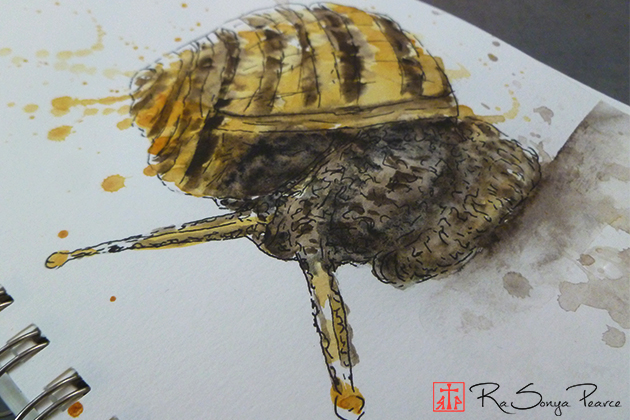 Snail, Art 365-16-146, RaSonya Pearce, www.FaithworksArtStudio.com